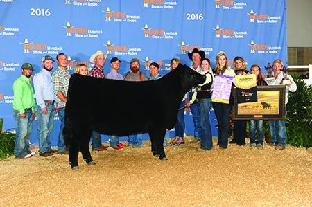 Calli West Supreme Champion Breeding Heifer Houston Livestock Show