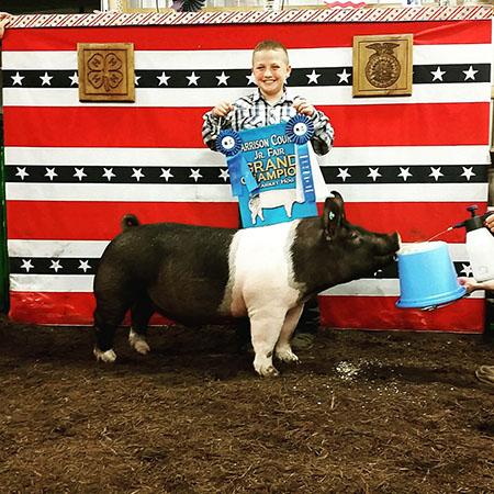 Grady_Harrison_Grand Champion Market Hog Harrison County Fair