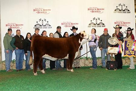 Kiley Klas  Sherman TX Grand Champion Horned Heifer Fort Worth