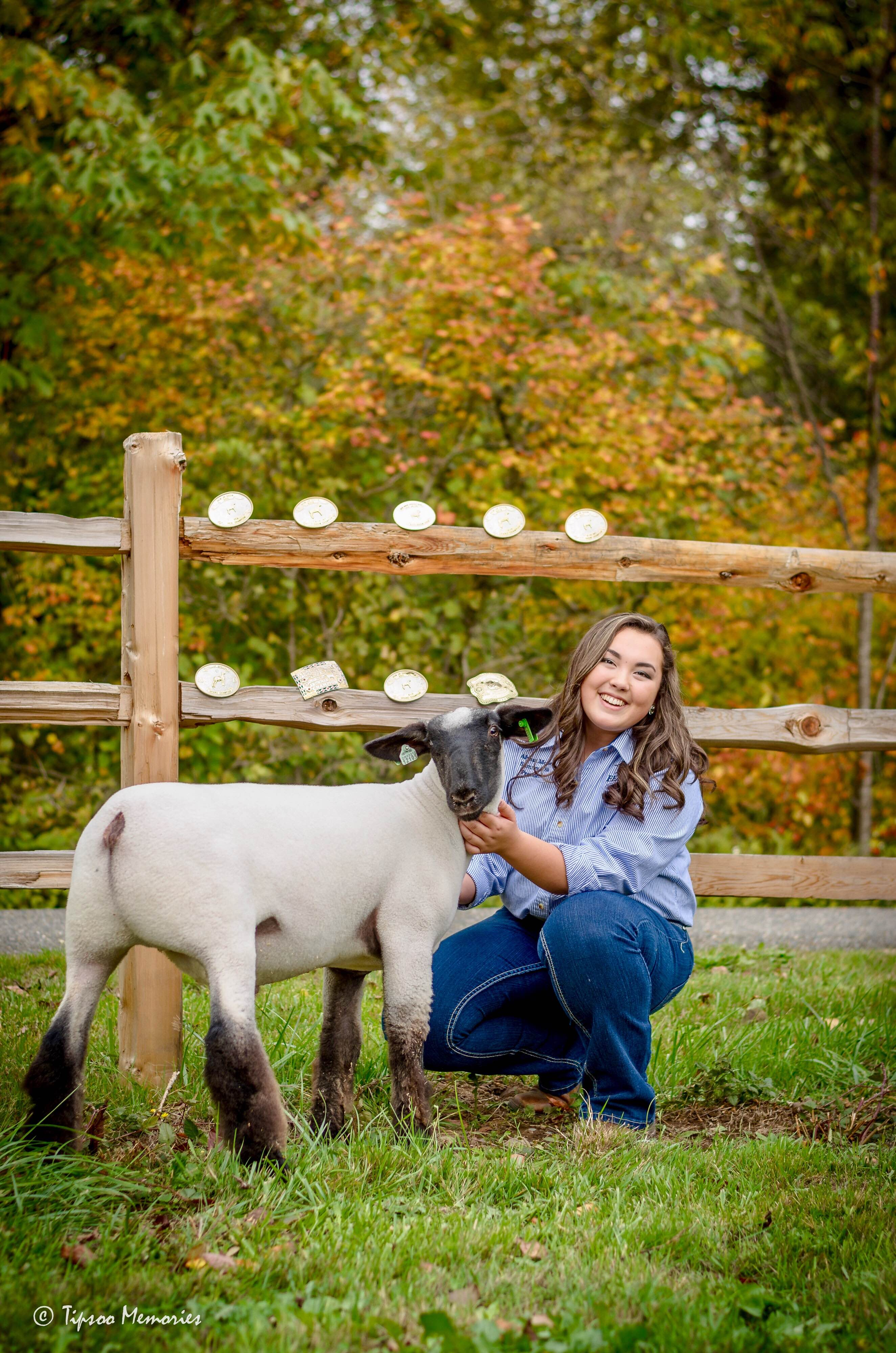 Sure Champ Senior Photo Ideas: Show Lamb