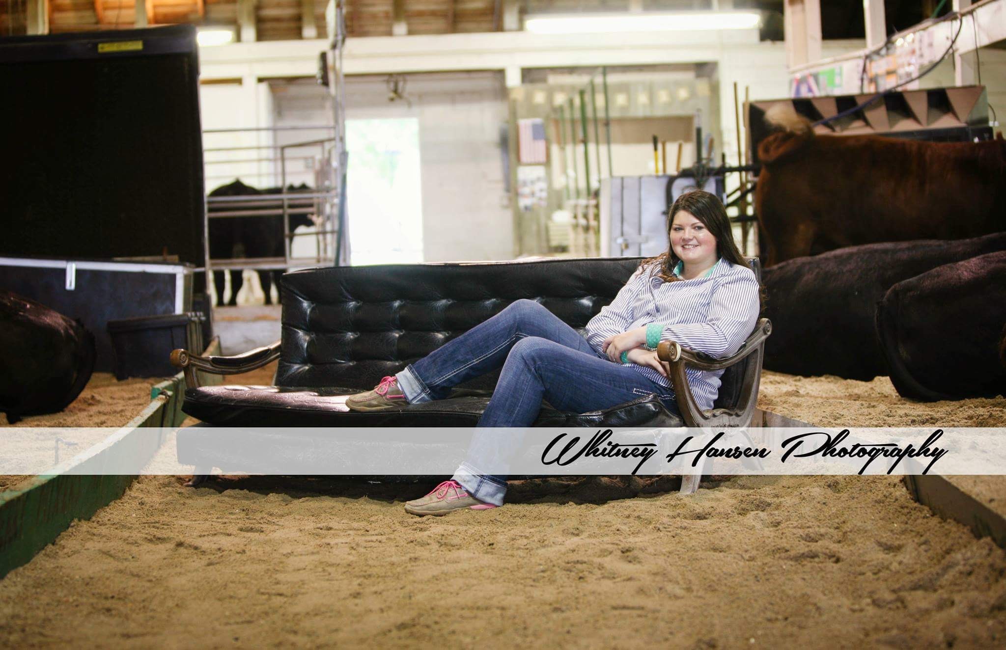 Sure Champ Senior Photos: Showbarn