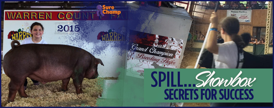surechamp-showboxtlach-header-oct2016