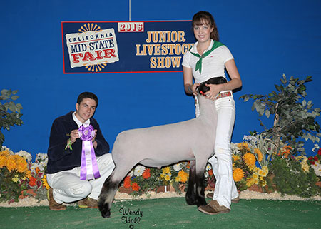16-champmarketlamb-californiamidstatefair-maddenfamily