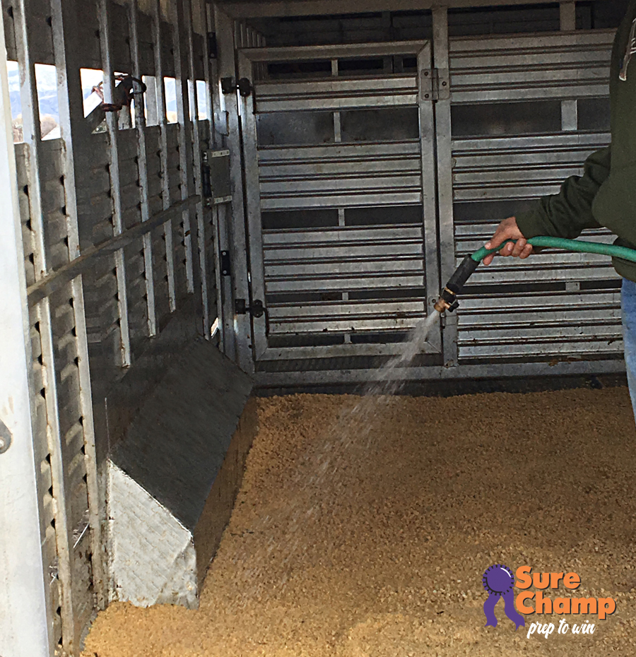 Stock Trailer Bedding Tips