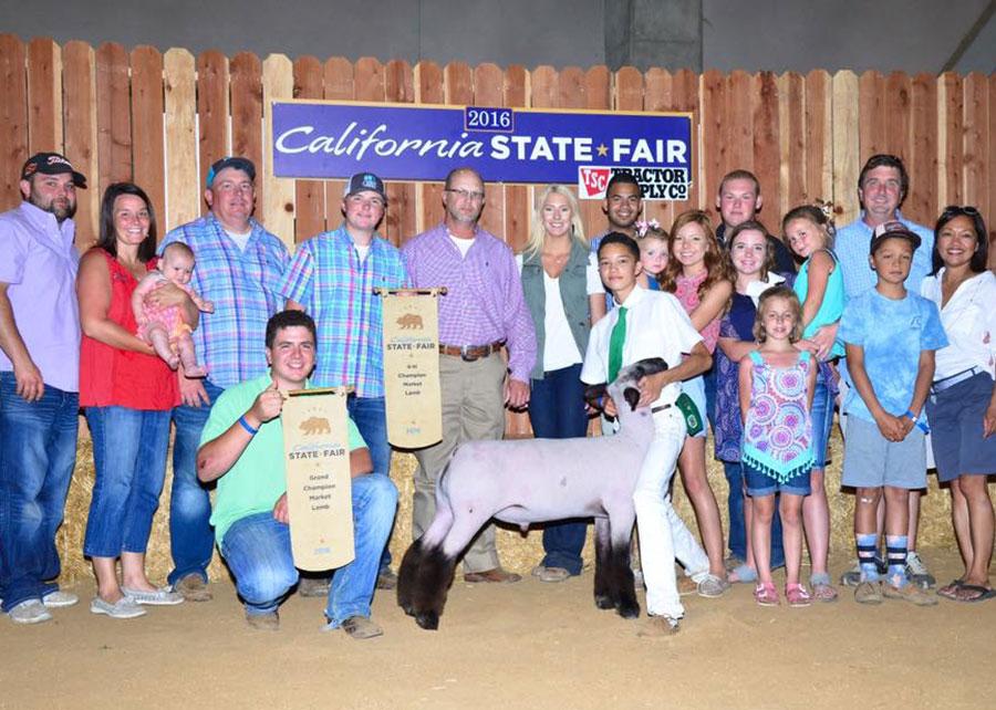 16-supreme-champion-mkt-lamb-cali-state-fair-owne-clark