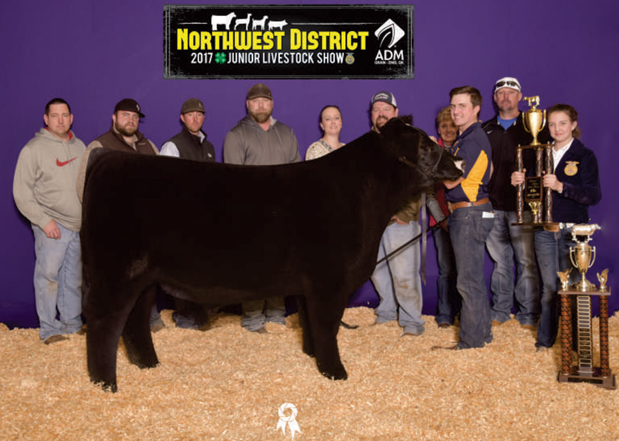 Grand Champion Market Steer2017 Northwest District Junior Livestock ShowBreyden Codding