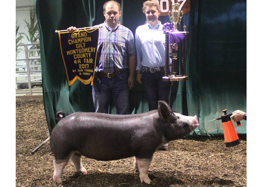 Grand Champion Gilt2017 Montgomery County 4-H FairShown by Layla Bennett
