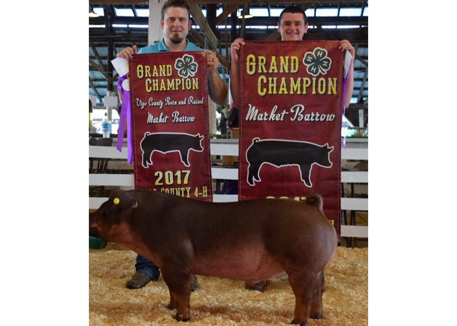 Grand Champion2017 Vigo County FairShown by Lance Fagin