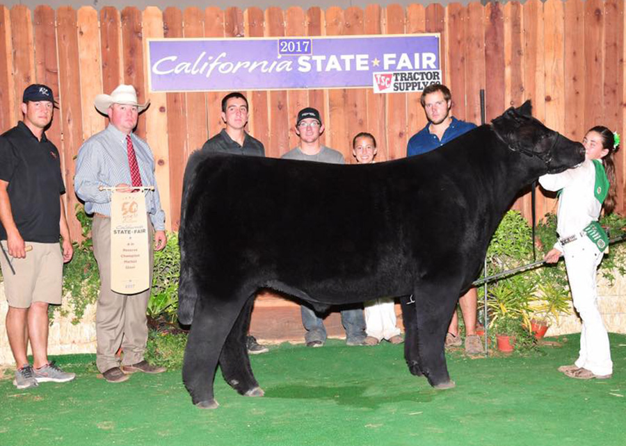 Reserve 4-H Steer2017 California State FairShown by Carly Wheeler