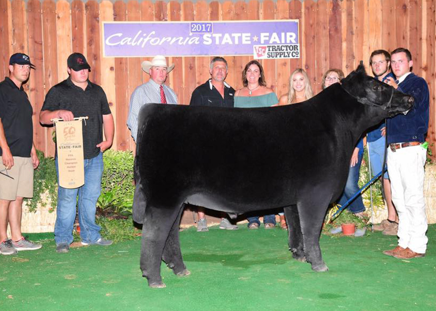 Reserve FFA Steer2017 California State FairShown by Brice Davis