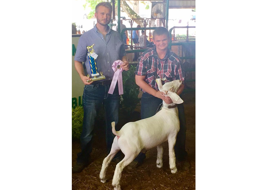 Grand Champion Market Wether2017 Vanderburgh County 4-H Boer Goat ShowCaleb Welte