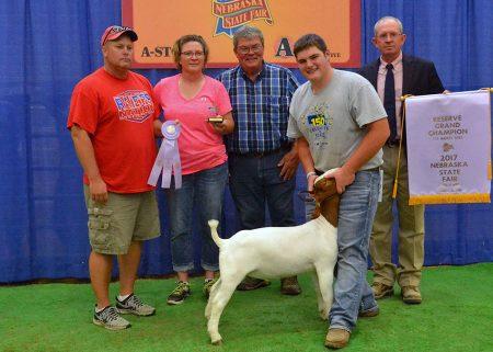 FFA Res Champion Mkt Goat2017 Nebraska State FairShown by Sheldon Johnsen