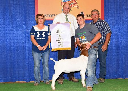 4-H Res Champion Mkt Goat2017 Nebraska State FairShown by Sheldon Johnson