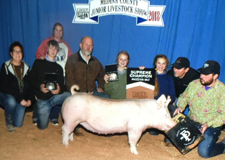 18-supreme-champion-breeding-gilt-medina-county-laurel-pfeiffer