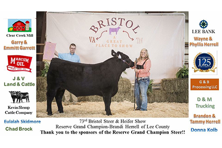 17 Bristol Steer and Heifer Show, Reserve Grand Champion, Shown by Brandi Herrell Testimonial