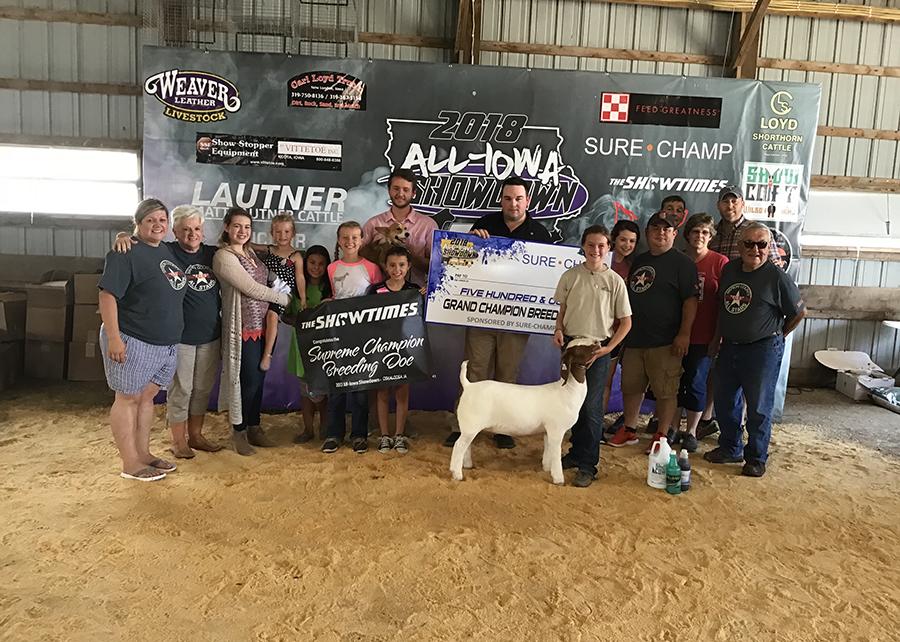 18 All Iowa Showdown, Grand Champion Breeding Doe, Shown by Raegan Decious, Champ