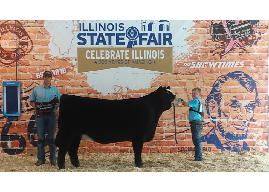 18 Champion AOB Illinois State Fair Stetson Storey