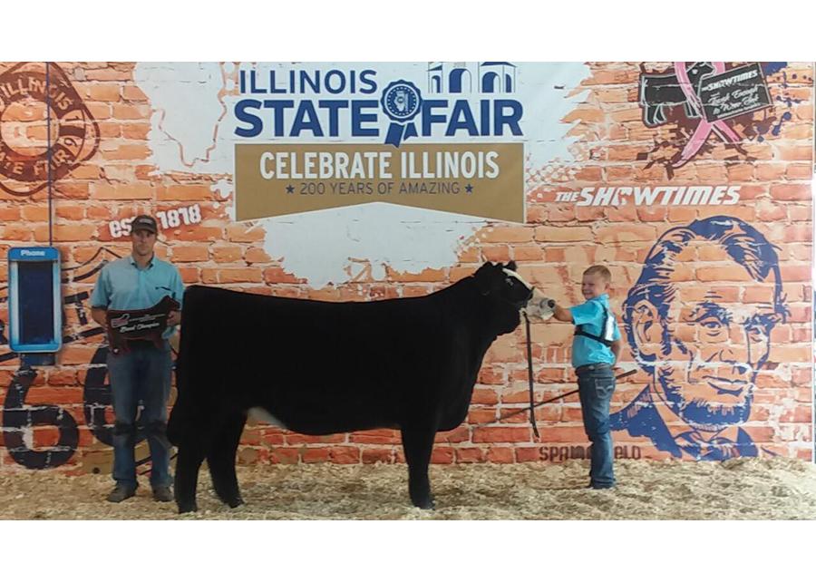 18 Champion AOB Illinois State Fair Stetson Storey