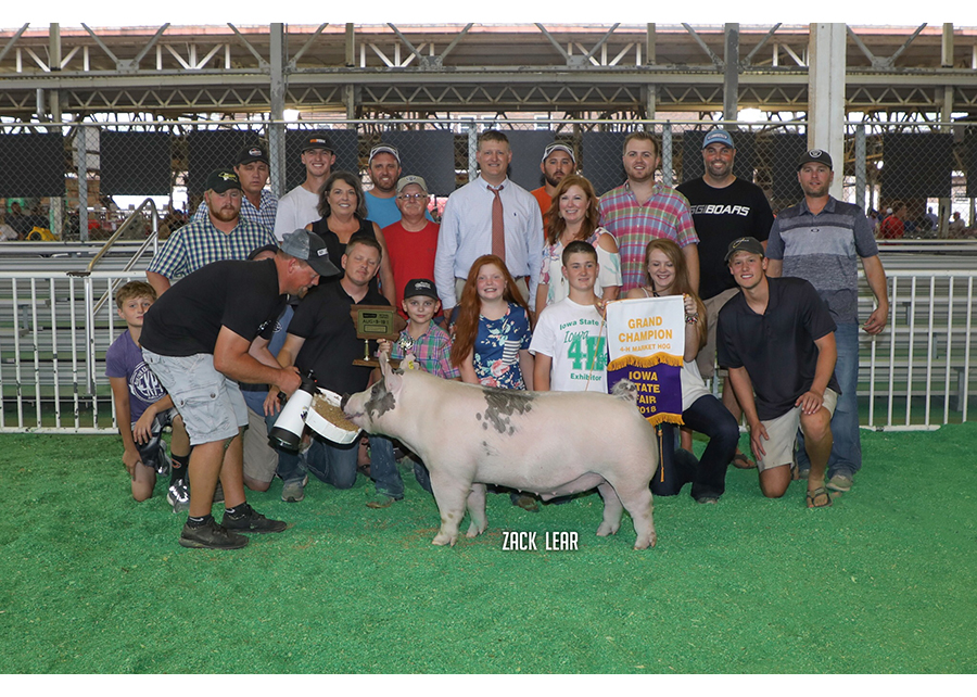 18 Iowa State Fair, Grand Market Hog, shown by Pierce Woodruff