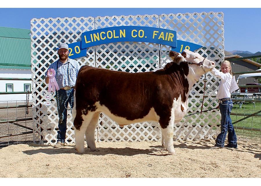 18 Lincoln Co Fair, Reserve Champion, Oakley Hepworth Champ