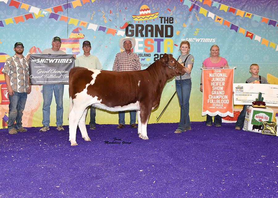 18 National Junior Heifer Show, Grand Champion Fullblood Female, Shown by Mikala Denney Champ