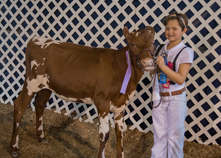 18 Shippensburg Community Fair, Reserve Junior Grand Champion, Shown by Jordyn Nailor Champ
