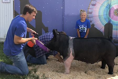 18 Walworth Co. Fair, Grand Champion, Shown by Addy Popp Test