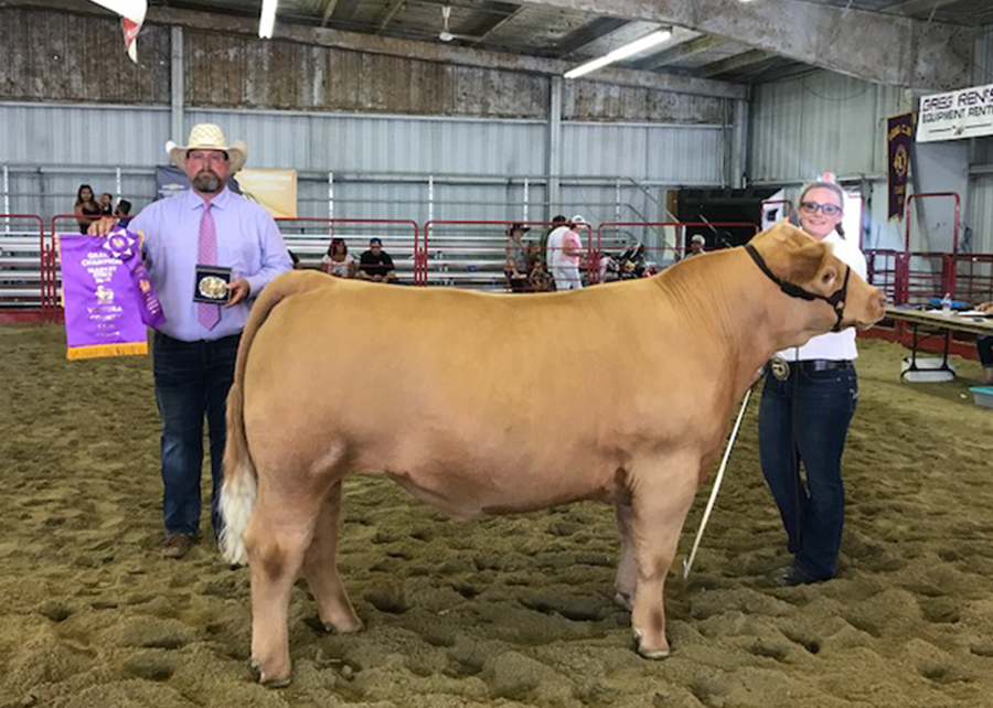 18 ventura County Fair, Grand Champion, Shown by Samantha Points