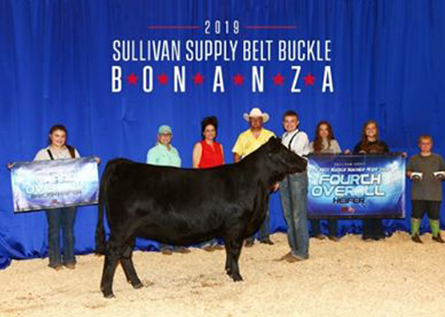 2019 Belt Buckle Bonanza, Champion Angus, Shown by Cooper Puckett