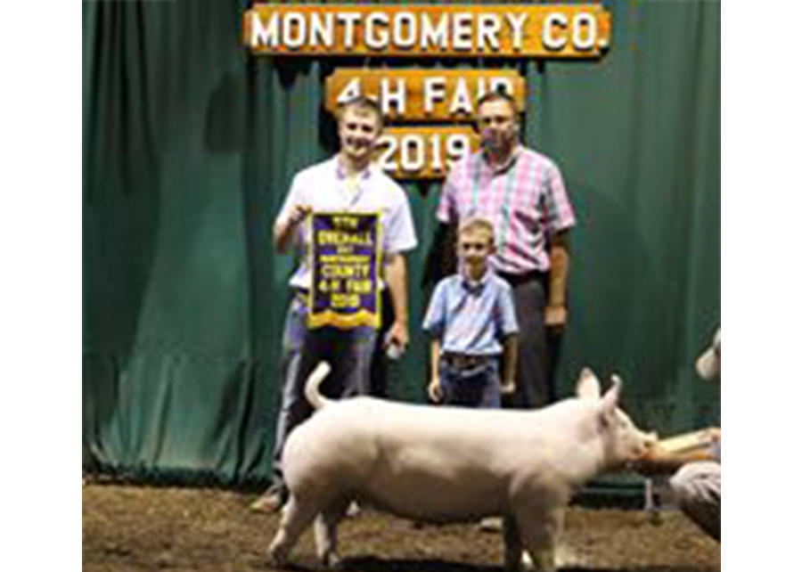 2019 Montgomery County 4H Fair, Champion York Gilt, Shown by Peyton Wininger