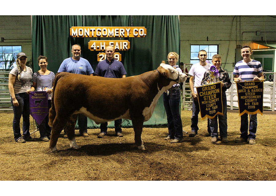 2019 Montgomery County 4H Fair, Grand Champion Steer, Shown by Mia Stadler