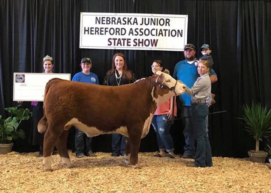 2019 Nebraska State Hereford Show, Grand Champion Futurity Steer, Shown by Gracie Pinckney