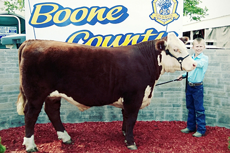 2019 Boone County Fair, 4H Reserve Grand Champion Hereford Steer, Shown by Kolton Knutson-test