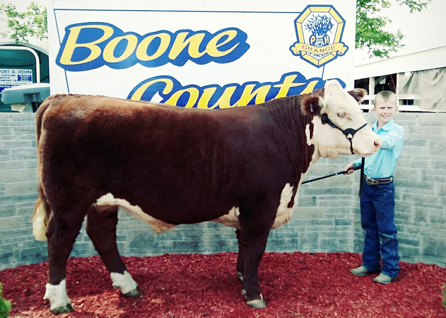 2019 Boone County Fair, 4H Reserve Grand Champion Hereford Steer, Shown by Kolton Knutson