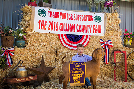 2019 Gilliam County Fair, Grand Champion Market Goat, Shown by Hunter Wilson-test