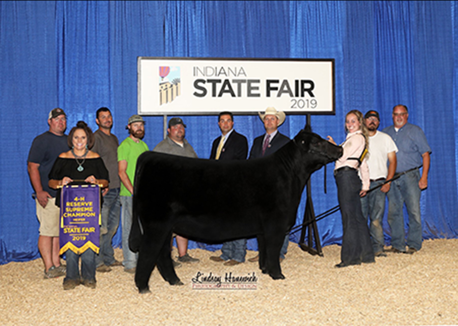2019 Indiana State Fair, Reserve Supreme Female, Shown by Payton Farmer-champ