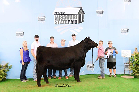 2019 Missouri State Fair, Grand Champion Purebred Simmental Heifer, Shown by Bryce Leefers-test