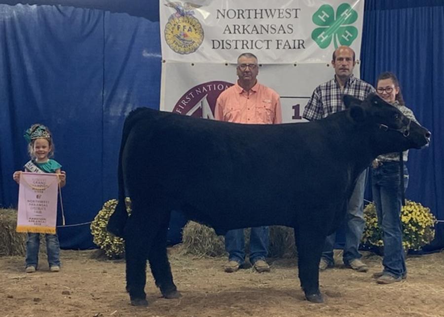 2019 North West Arkansas District Fair, Reserve Champion Market Steer, Shown by Cheyenne Dawson