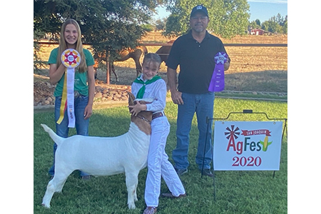 2020 San Joaquin AgFest Virtual Show, Reserve Supreme Champion:Champion 4H Goat, Shown by Emma Graham