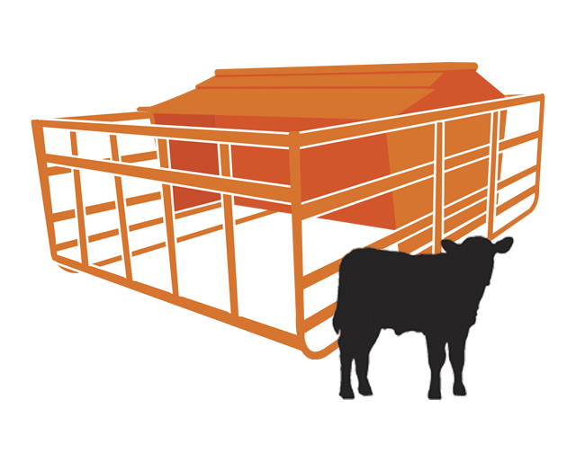 Creep Feed for Calves